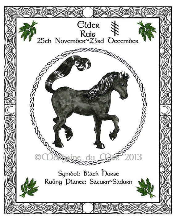 Black Horse Elder Celtic Tree Calendar Lunar by MagickMermaid, $20.00