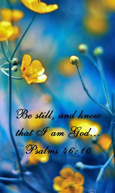 Be still, and know that I am God: I will be exalted among the heathen, I will be exalted in the earth. Psalms 46:10 KJV