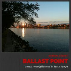 Ballast Point Neighborhood South Tampa   South Tampa's Hidden Treasure   Best Places to Live in Tampa   Homes for Sale