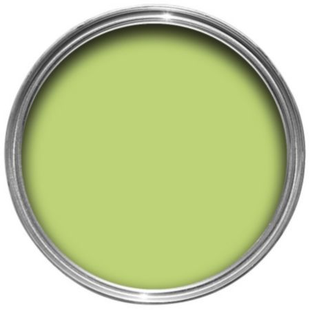 Dulux Endurance Kiwi Crush Matt Emulsion Paint 2.5L: Image 1