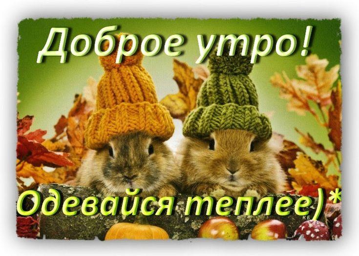 поражении осень похолодало открытки стамбуле трудно найти