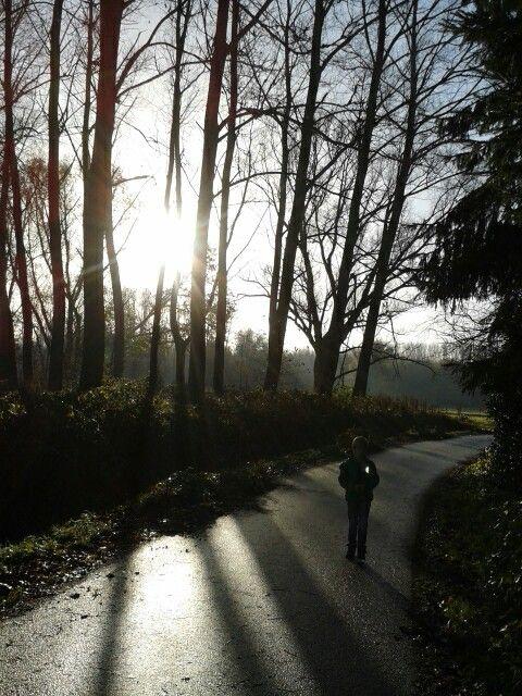 Mooi zonnige ochtend # Stiphout