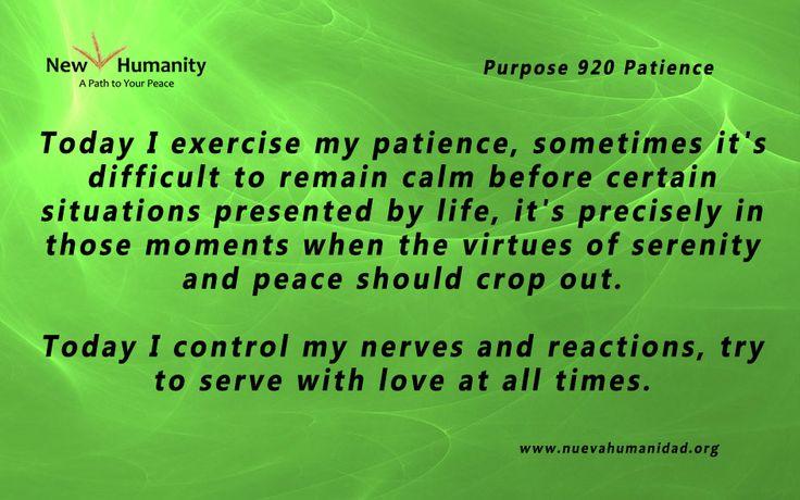 Purpose 920 Patience