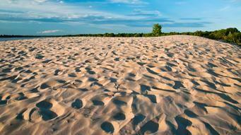 Les plages de l'Ontario Plage de sable au Parc national de Sandbanks
