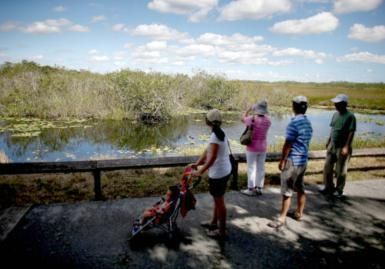 Florida's Everglades National Park with Kids