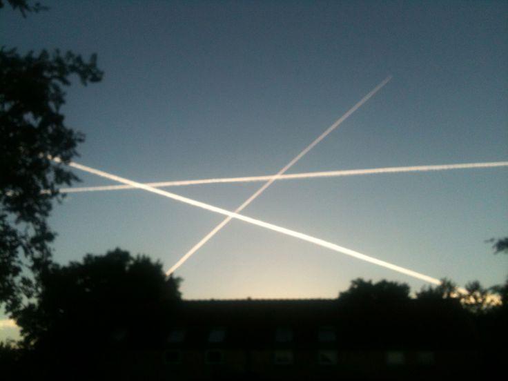 Hvor mon de flyver hen denne morgen?