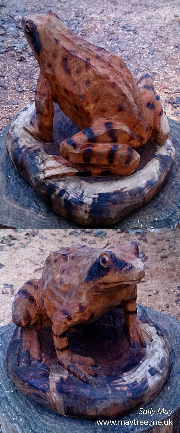 A little speckled frog chainsaw carving by Sally May