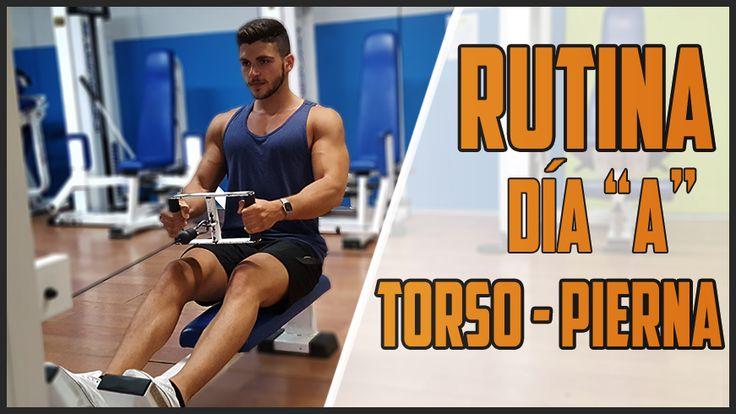 Las rutinas torso-pierna son una opción muy buena para progresar en el gimnasio y obtener buenos resultados a causa de sus múltiples beneficios.