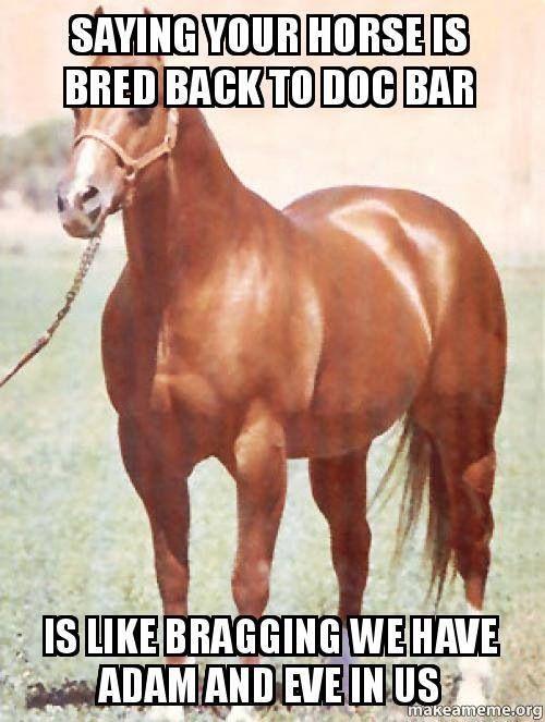 Hehe... I have a Doc Bar quarter horse...