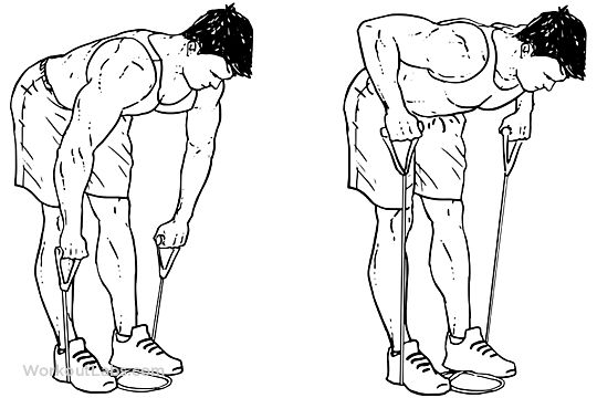 Resistance Band Bent Over Rows