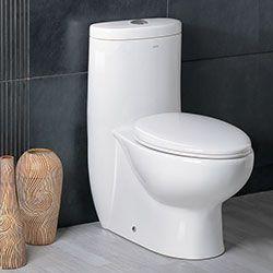 Ariel Platinum TB309-1M Contemporary Toilet with Dual Flush #Ariel #HomeRemodel #BathroomRemodel #BlondyBathHome #Toilets