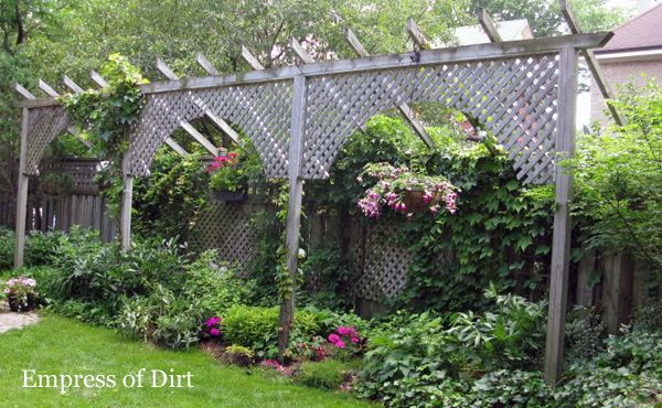 Privacy Screen Ideas and How to Make A Fence Taller...LOVE this particular idea. I can see people's heads walking past our back yard fence that abuts the nearby street. This would definitely increase privacy and increase the beauty