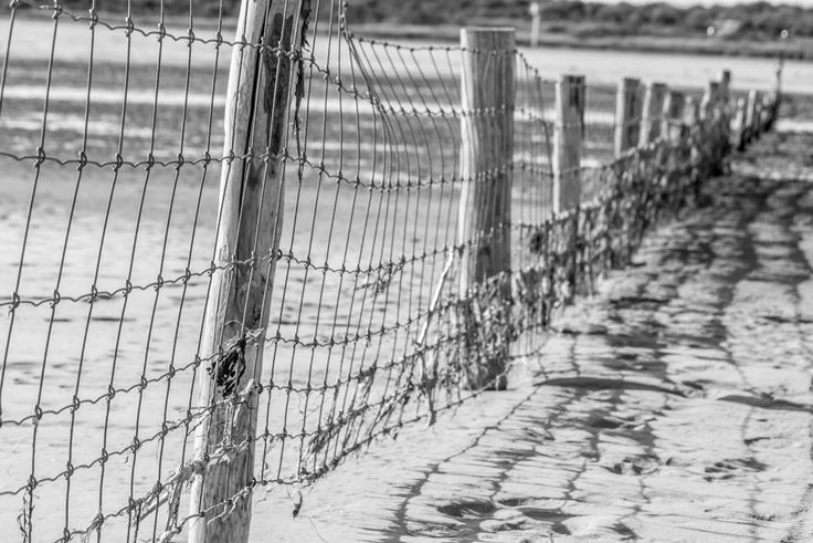 Beach at Texel
