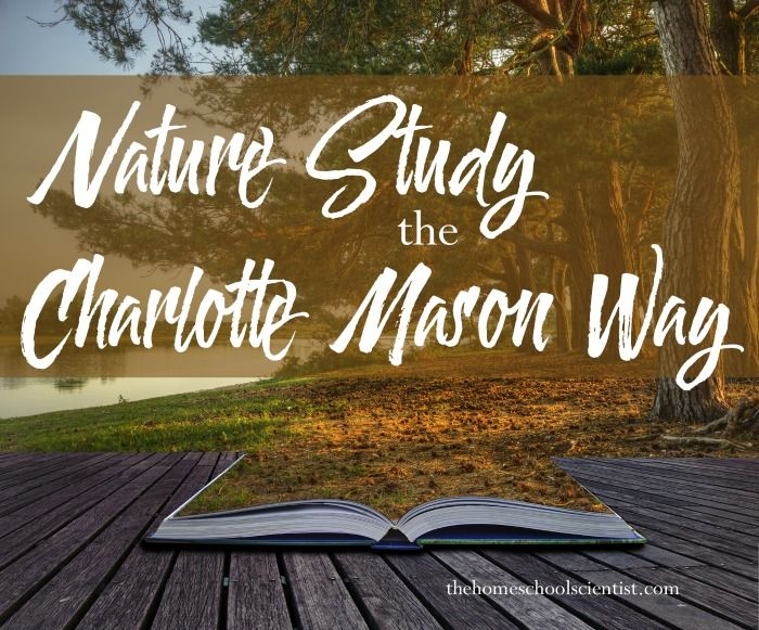 Nature Study The Charlotte Mason Way {with a printable}                                                                                                                                                                                 More