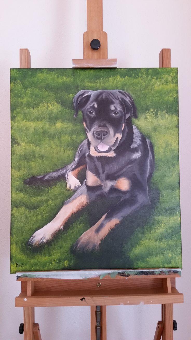 Rottweiler Angel 50 x 60 acryl