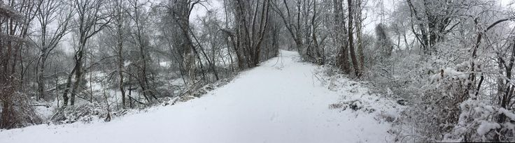 Went for a run in the snow and had the whole trail to myself! Trail near my house Pennsylvania USA #hiking #camping #outdoors #nature #travel #backpacking #adventure #marmot #outdoor #mountains #photography