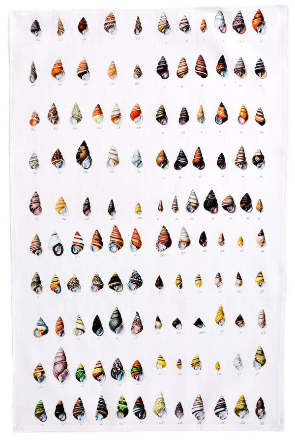 Shells Tea Towel
