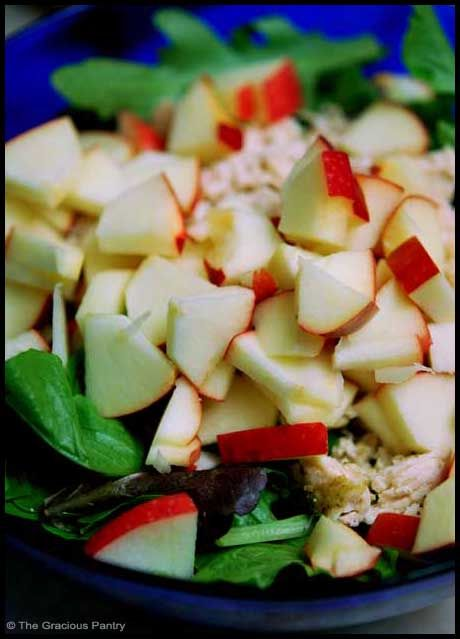 Clean Eating Chicken Apple Salad Ingredients 1 chicken breast, baked with herb of your choice 2 cups lettuce 1 small apple 2 tbsp. vinigarette Directions Step 1 – Dice or shred your chicken breast. Step 2 – Dice your apple. Step 3 – Toss all ingredients in a large salad bowl. Eat and Enjoy