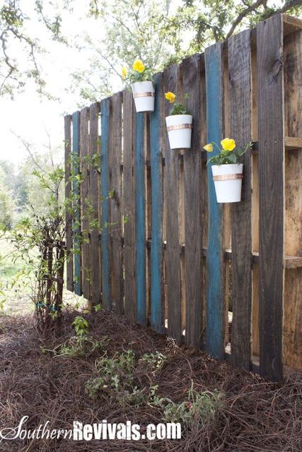 Pallet Garden Wall - Phase II ~ Decorating - Southern Revivals - I'm thinking a privacy wall with climbing flowering vines for the deck