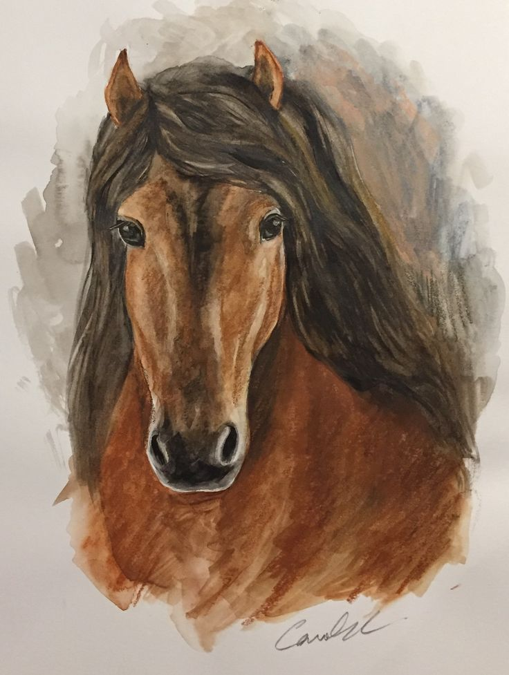 Watercolor/ brown horse/ AU$70. (Framed) Visual size: 20x25 cm Actual size: 28x36 cm