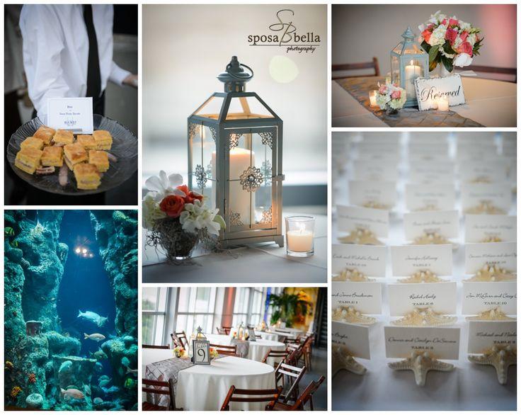15 Best Images About Aquarium Weddings On Pinterest