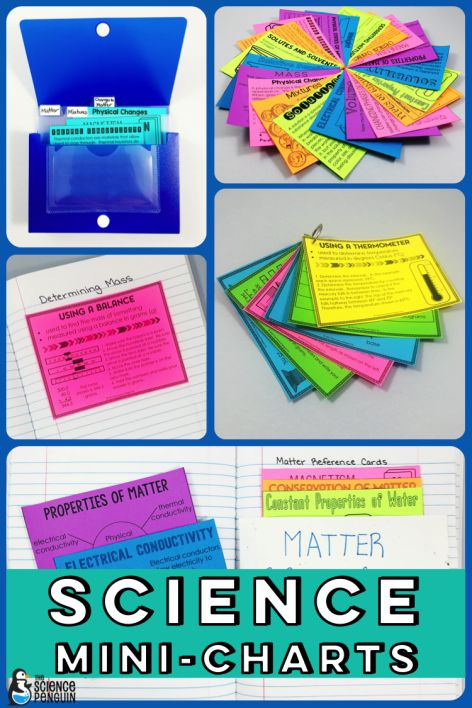 Science Mini-Charts: a solution for absent students, accommodations, and review