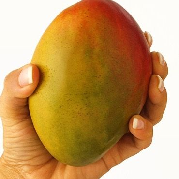Behold the Mango!!! Thursday we're gonna tip-toe in the tap room as we tap our tip-top Mango Berliner Weisse. Actually we're not going to tip-toe and we don't know if it's tip-top but it sure was fun to say! Anyway 4pm tip-toe or stomp right in for that matter and try our new citrus Berliner Weisse. It's a good one for summer. And tip-toeing. 129 North 10th Street Suite 8 - under The Blue Orchid. #boilerbrewingcompany #craftbeer #raproom #drinklocal #mangoberlinerweisse #tiptoeing…