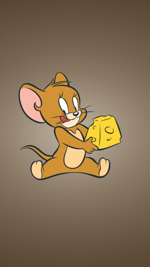 tom and jerry, cheese, mouse Tom, jerry wallpapers, Tom
