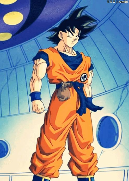 Goku! YEAH! How's it goin', fellow Saiyan? x3 (Mom: You're not a Saiyan!) BE QUIET! I'm having a moment here!