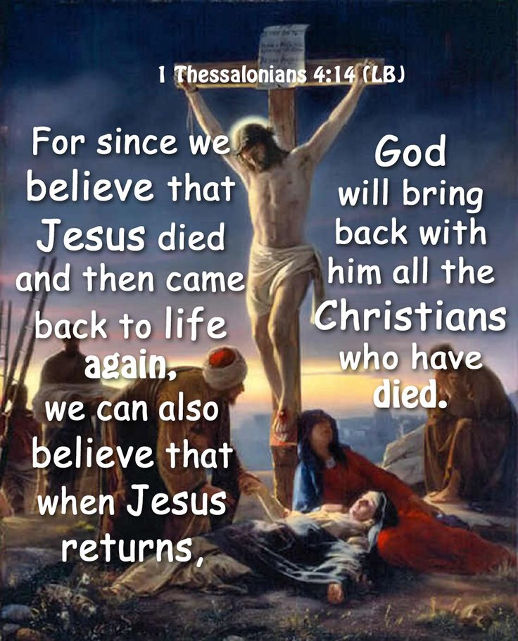 Bring Him Back Quotes: Pin By Jessie Evers On Jesus Is The Way The Truth And The