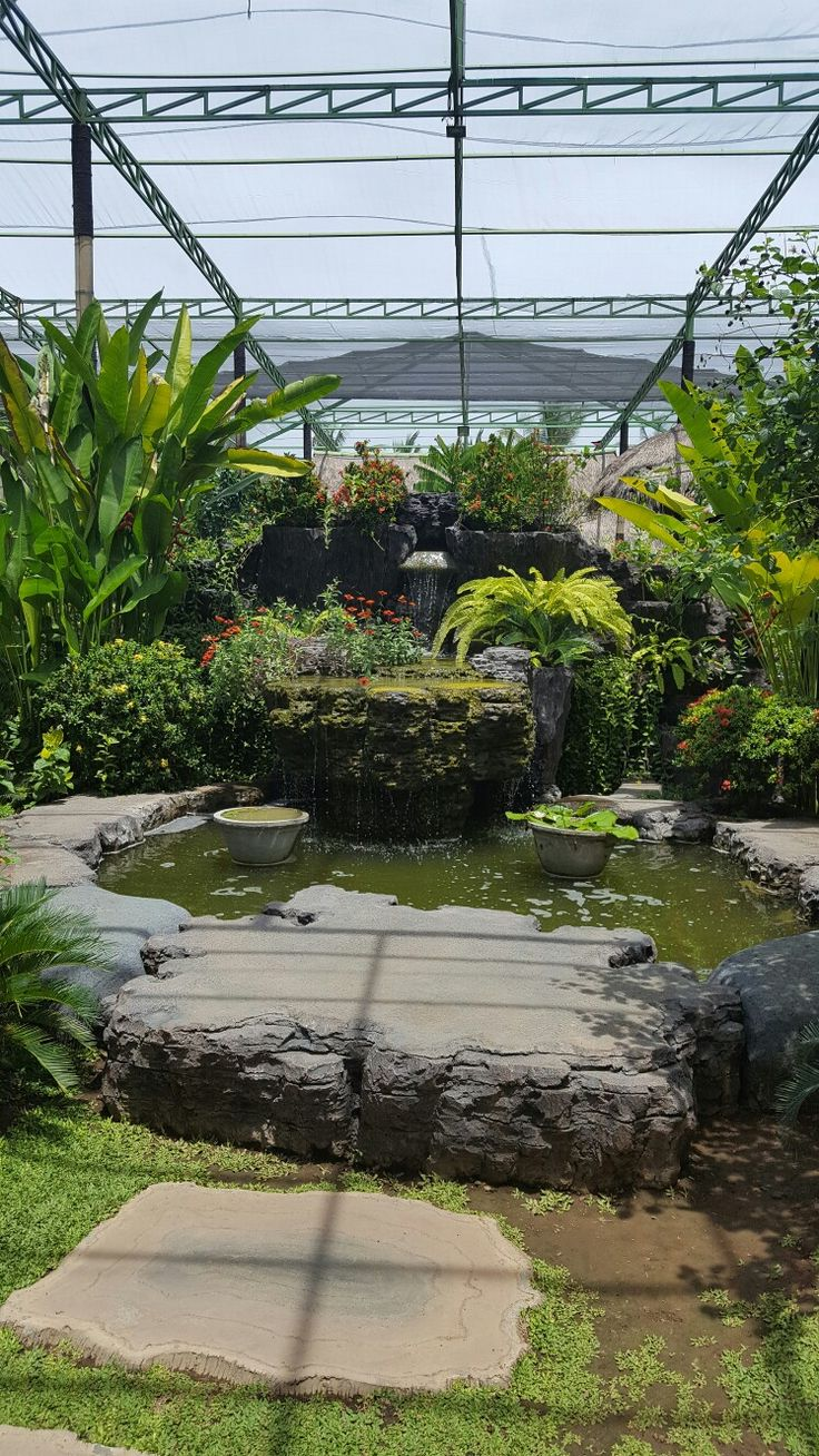 Butterfly park Bali