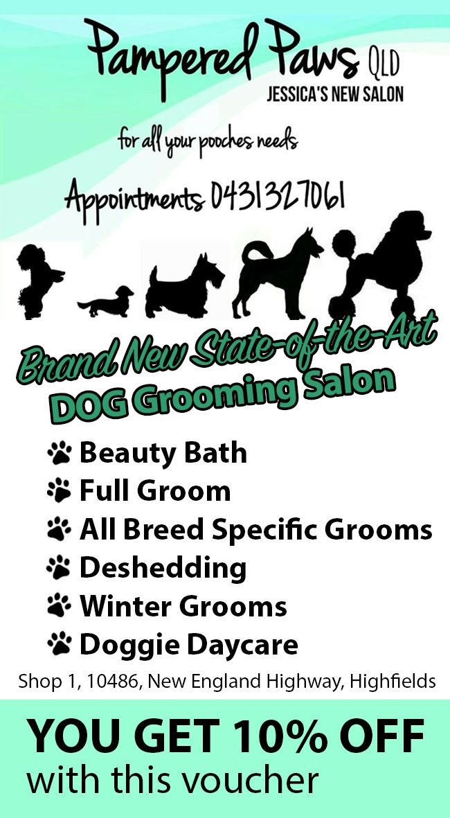 Pampered Paws Dog Grooming Salons Dog Grooming Grooming Salon