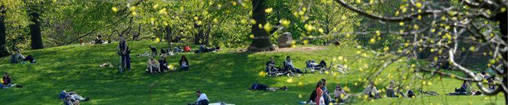 Prospect Park  Brooklyn,NY