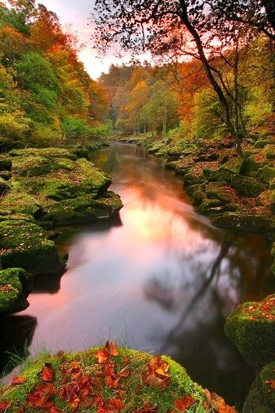 The Strid, Bolton Abbey, Yorkshire Dales, North Yorkshire, England