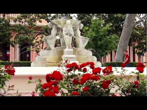 University of Southern California- makes me want to cry. Literally.