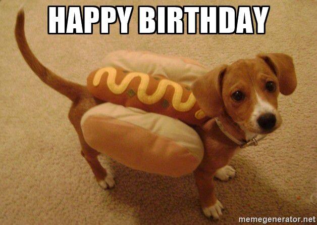 Dog Birthday Meme | Happy Birthday - Hot Dog Weiner Dog ...