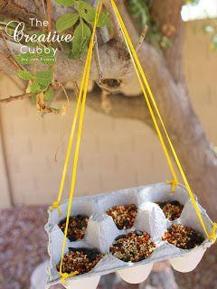 How to make Egg Carton Bird Feeder #kids #kidscrafts #campcrafts