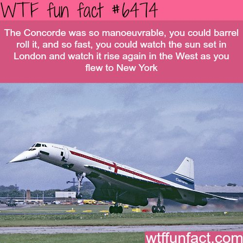 Concorde airplane - WTF fun facts | Visit http://gwyl.io/ for more diy/kids/pets videos