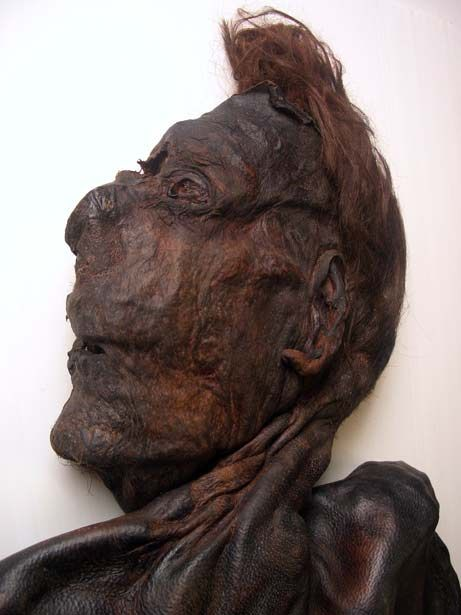 Clonycavan Man (around 392 BC) is a well-preserved Iron Age bog body found in Clonycavan, County Meath, Ireland in 2003. Only his torso and upper abdomen are preserved. He was found in a peat harvesting machine, which was possibly responsable for the severing of his lower body. The most distinguishing feature of the man was his hair, which was in a standing Mohawk hairstyle raised with the help of hair gel (made of plant oil and pine resin). His skull was split open with most likely an axe.