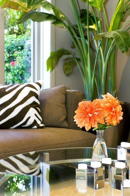 31 best orange and green living room images on pinterest for Decoration maison orange
