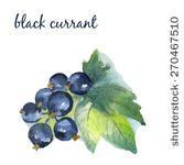 http://www.shutterstock.com/g/natali_ art/sets/8397905-fruits-and-vegetables