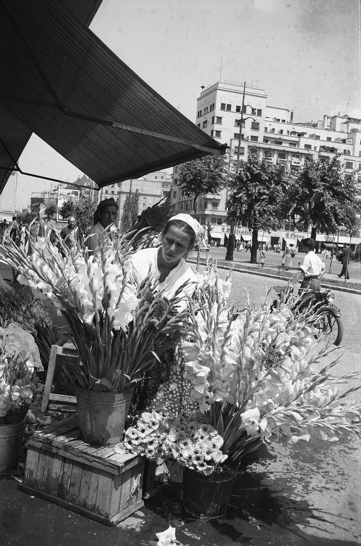 Bucarest (1956)