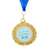 Медали на выписку из роддома, купить прикольные шуточные медали для выписки из роддома. #стикерыдлядетей #японскиеподгузники #наклейкинаавто #оформлениевоздушнымишарами #сталамамой #моднаямама #mom #5месяцев #встречамам #скоророды #8недель