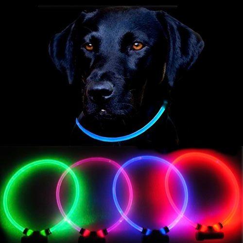 Lumitube Led Dog Safety Collar Glow The O Jays And Led