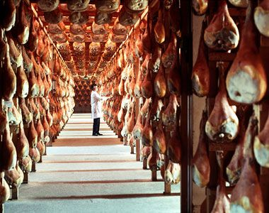 The prosciutto producers of San Daniele in Friuli Venezia Giulia Italy