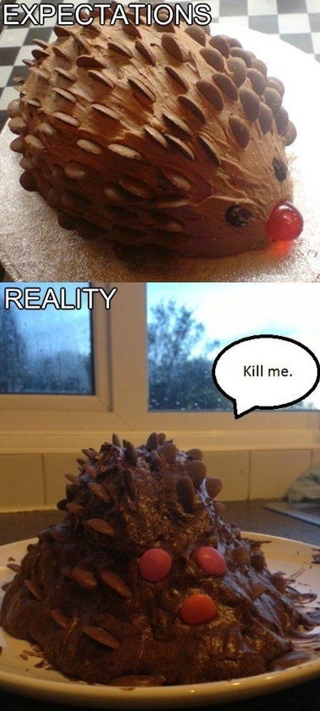 Hedgehog Cake - www.meme-lol.com
