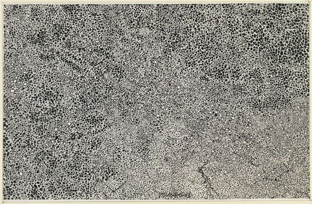 "Jean Dubuffet. Textural Transcription I (Transcription texturologique I). 1958. Ink on paper, mounted on board, 9 x 14 1/4"" (22.9 x 36.2 cm). The Museum of Modern Art, New York. The Joan and Lester Avnet Collection, 1978. Photograph by John Wronn"