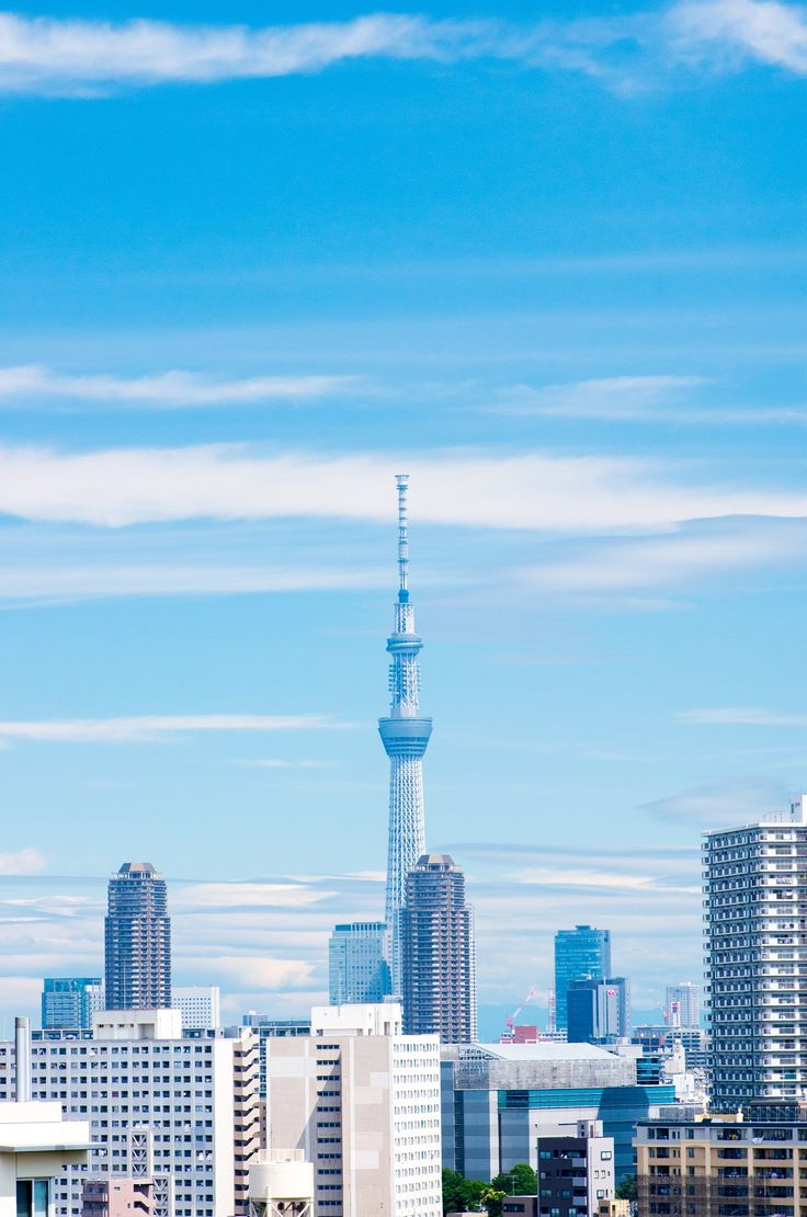 Enjoy a comprehensive Tokyo one-day tour, covering its best gardens, temples, shopping areas and a Tokyo Bay cruise