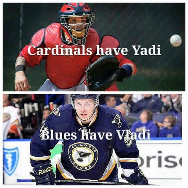 Stl cards stl Blues