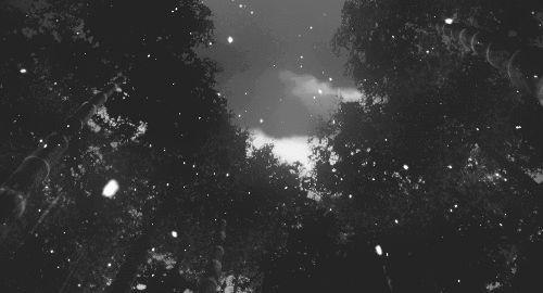 Happy holidays beautiful winter scene gif -